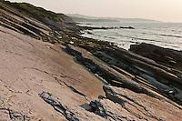 Europe/France/Aquitaine/64/Pyrénées-Atlantiques/Pays-Basque/Env de Ciboure: La Corniche basque - les hautes falaises de flyschs plongent en oblique leurs roches feuilletées vigoureusement attaquées par les flots