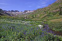 The American Basin outside of Lake City, CO.