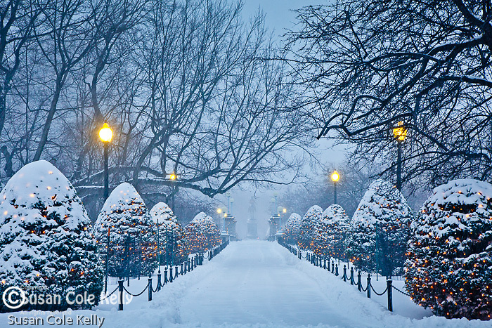 Fresh snow in the Boston Public Garden, Boston, MA