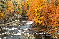 River Moriston in autumn, Scotland