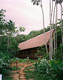 PERU, Amazon Rainforest, South America, Latin America, view of a lodge surrounded with trees at the Refugio Amazonas.