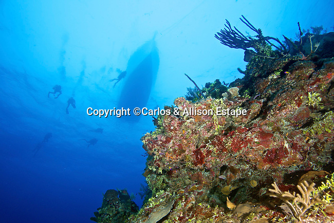 Divers, boat, Reef, Grand Cayman
