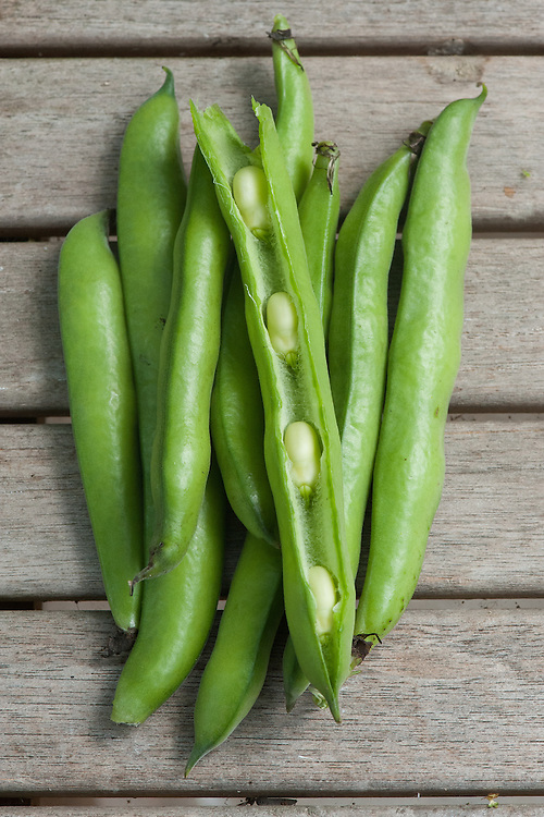 Broad bean 'Express', early July.