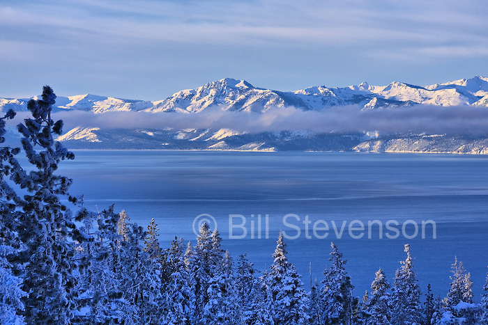 An image of Lake Tahoe after a winter storm. If you want to take a photo of snowy trees in Tahoe you have to be an early riser. The lake is at the same latitude as Virginia, and although a lot higher in elevation, the sun is intense. As soon as the sun is up the snow begins falling from the trees.