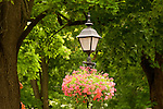 Street light and planter, West Fourth Street, Williamsport, PA.