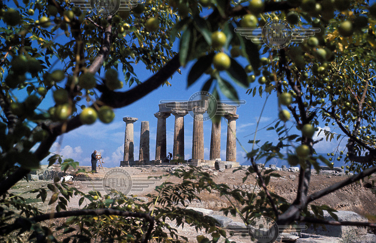 An ancient temple in Crete, seen through the leaves and fruit of an olive tree.