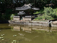 Pavillon Sajeonggibigak am Buyongji-Teich im Secret Garden = Huwon= Biwon des Changdeokgung Palast, Seoul, Südkorea, Asien, UNESCO-Weltkulturerbe<br /> pavilion Sajeonggibigak at Buyongji-pond  in the secret garden of  palace Changdeokgung,  Seoul, South Korea, Asia UNESCO world-heritage