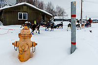 Ramey Smyth and team run past a fire hydrant as he leaves the Kaltag checkpoint on Sunday morning March 10th during the 2019 Iditarod Trail Sled Dog Race.<br /> <br /> Photo by Jeff Schultz/  (C) 2019  ALL RIGHTS RESERVED