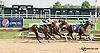 Dream Defence winning at Delaware Park on 8/13/14