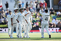 21st November 2019; Mt Maunganui, New Zealand;  Tim Southee celebrates the dismissal of England's Joe Denly with team mates. international test match cricket, Day 1, New Zealand versus England at Bay Oval, Mt Maunganui, New Zealand.