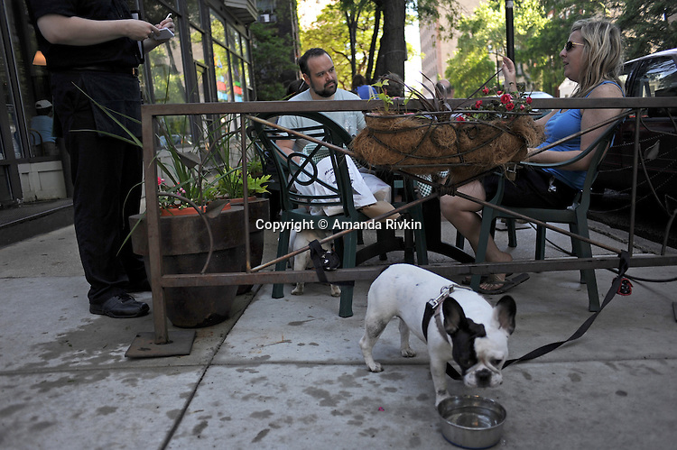 A dog drinks from a bowl as customers seated outside order food at Nookie's on North Wells Street, the main shopping thoroughfare in Old Town, in Chicago, Illinois on June 20, 2009.