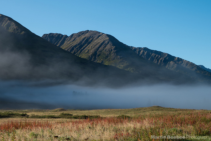 Misty meadow and mountains at Turnagain Pass, Kenai Penninsula, Alaska