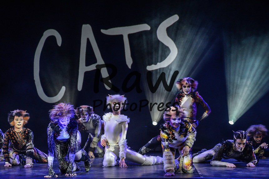 El musical 'Cats' se ha presentado en Par&iacute;s.<br /> <br /> 196255 Arnal/Starface 2015-04-27 <br /> Paris France<br />  Conference de presse du spectacle Cats a partir du 1 Octobre 2015 au theatre Mogador.
