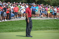 Tiger Woods (USA) looks over his putt on 1 during 4th round of the World Golf Championships - Bridgestone Invitational, at the Firestone Country Club, Akron, Ohio. 8/5/2018.<br /> Picture: Golffile | Ken Murray<br /> <br /> <br /> All photo usage must carry mandatory copyright credit (© Golffile | Ken Murray)