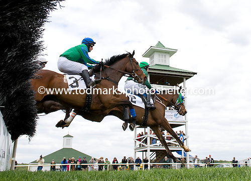 High flying Reveillon (2) defeats Brave Prospect in the first race at Kingston Downs, a maiden claiming hurdle.