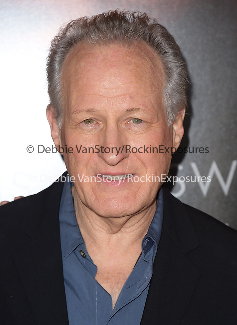 Michael Mann attends The Universal Pictures World Premiere of Blackhat held at The TCL Chinese Theater  in Hollywood, California on January 08,2015                                                                               © 2015 Hollywood Press Agency
