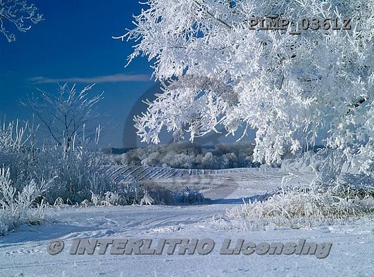 Marek, CHRISTMAS LANDSCAPES, WEIHNACHTEN WINTERLANDSCHAFTEN, NAVIDAD PAISAJES DE INVIERNO, photos+++++,PLMP0361Z,#xl#