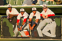(L-R) Hickory Crawdads players Santo Perez #22, Jordan Akins #5, Jeremy Williams #4 and Trevor Adams #30 watch the action from the top step of the dugout during the game against the Kannapolis Intimidators at CMC-Northeast Stadium on April 7, 2012 in Kannapolis, North Carolina.  (Brian Westerholt/Four Seam Images)