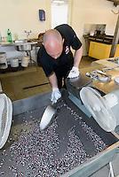 Bonbon-Fabrik &quot;Svaneke Bolcher&quot;  in Swaneke auf der Insel Bornholm, D&auml;nemark, Europa<br /> candy factory Svaneke Bolcher in Svaneke,  Isle of Bornholm Denmark