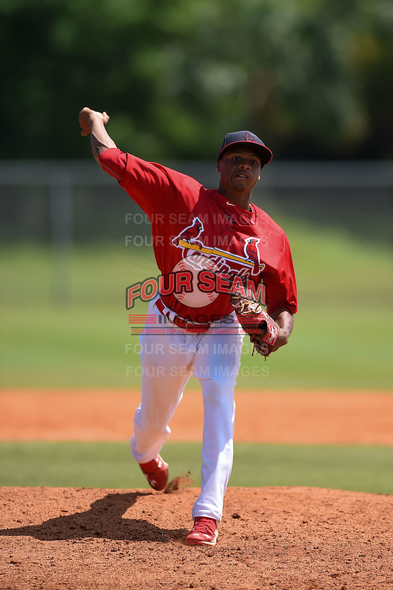 St. Louis Cardinals pitcher Luis Perdomo (31) during a minor league spring training game against the New York Mets on April 1, 2015 at the Roger Dean Complex in Jupiter, Florida.  (Mike Janes/Four Seam Images)