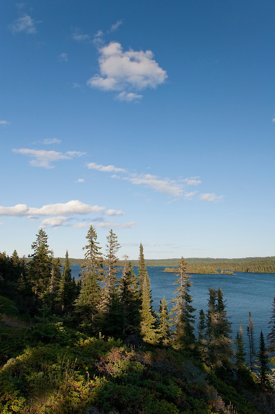 Boreal forest and Lake Superior shoreline at Isle Royale National Park.