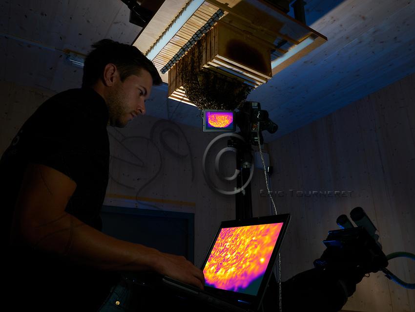 Benjamin Rutschmann observing the bees' activity with a thermal camera.<br /> Hobos- Universit&eacute; de W&uuml;rzburg, Allemagne. Observation par Benjamin Rutschmann avec une cam&eacute;ra thermique de l&rsquo;activit&eacute; des abeilles.