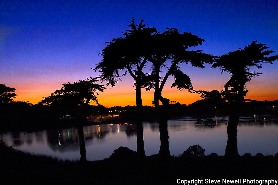 """Cypress Sunset"" at Harding Park Golf Course in San Francisco.  I was leaving the media dinner prior to the start of the 2009 President's Cup which I covered that week for the SF Examiner's online newspaper. I took this photo from the top of the gallery stands as I was departing.  The height of the stands allowed me to see the reflection in the water at the best angle to compose the Cypress Trees. The city pollution in the air provided one spectacularly colored sunset over San Francisco, California."