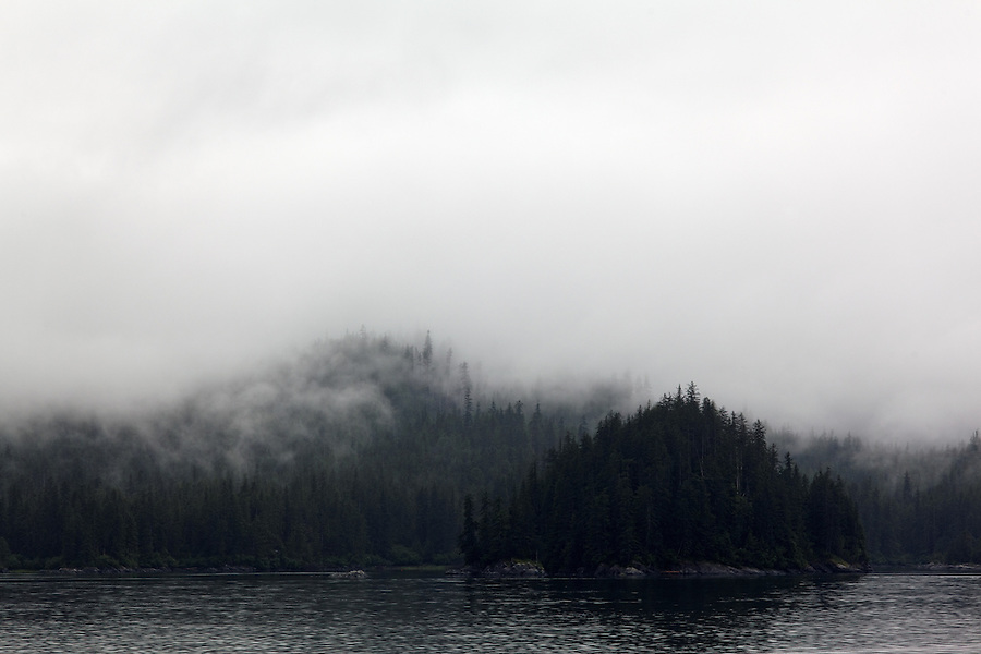 Fog shrouded forest along shoreline of Wrangell Narrows, Inside Passage, Southeast Alaska, USA