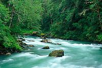 Sauk River, Mountian Loop Highway, Darrington, Washington