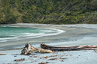 Smoothwater Bay near Jackson Bay with driftwood, South Westland, West Coast, World Heritage Area, South Island, New Zealand