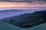 Sunset over rolling green hills and forest trees in spring from Bolinas Ridge, Mount Tamalpais State Park, California