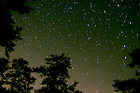 Pine Barrens night sky; NJ, Wharton State Forest