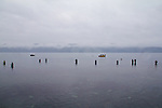 Puget Sound, Hood Canal, salmon fishermen fishing for Chum salmon, rain, winter, Hoodsport, Hoodsport Salmon Hatchery, Olympic Peninsula, Washington State, Pacific Northwest, USA,