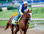 LOUISVILLE, KENTUCKY - APRIL 30: Improbable, trained by Bob Baffert, exercises in preparation for the Kentucky Derby at Churchill Downs in Louisville, Kentucky on April 30, 2019. Scott Serio/Eclipse Sportswire/CSM