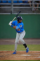 Myrtle Beach Pelicans Kevonte Mitchell (25) at bat during a Carolina League game against the Potomac Nationals on August 14, 2019 at Northwest Federal Field at Pfitzner Stadium in Woodbridge, Virginia.  Potomac defeated Myrtle Beach 7-0.  (Mike Janes/Four Seam Images)
