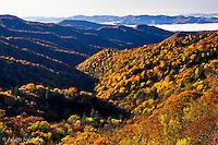 Autum view of Thomas Divide, Great Smoky Mountains National Park, North Carolina.