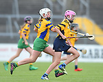 Emily Geary of Clonlara in action against Alanna Foudy of Inagh/Cloonanaha  during their Schools Division 1 final at Cusack Park. Photograph by John Kelly