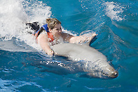 A woman getting a ride from a dolphin at Sea Life Park as part of the Dolphin Adventure program