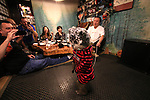 """October 22, 2016, Utsunomiya, Japan - A Japanese macaque Yume (meaning dream) wears a mask of cat as she shows her performance at an izakaya, Japanese pub """"Kayabuki"""" in Utsunomiya, 100km north of Tokyo on Saturday, October 22, 2016. The pub master Kaoru Otsuka trains Japanese macaques to help him and show their entertainment skills to attract customers including lots of foreign tourists.   (Photo by Yoshio Tsunoda/AFLO) LWX -ytd-"""