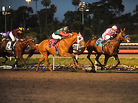 December 17, 2011.Liaison ridden by Rafael Bejarano, leading in the stretch and winning the CashCall Futurity at Hollywood Park, Inglewood, CA