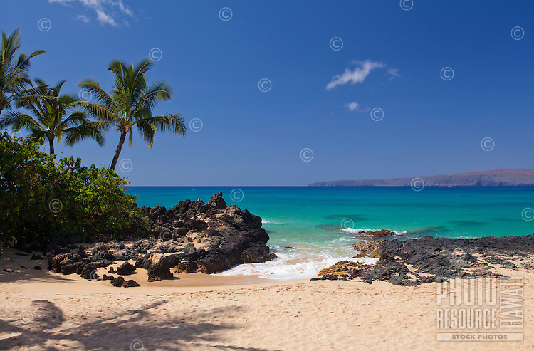 Palm trees and turquoise water at Secret Beach, Makena, Maui.