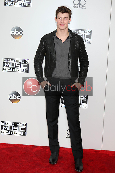Shawn Mendes<br /> at the 2016 American Music Awards, Microsoft Theater, Los Angeles, CA 11-20-16<br /> David Edwards/DailyCeleb.com 818-249-4998