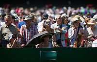 Fans enjoying the warm sunshine on the outside courts on Day 3<br /> <br /> Photographer Ashley Western/CameraSport<br /> <br /> Wimbledon Lawn Tennis Championships - Day 3 - Wednesday 5th July 2017 -  All England Lawn Tennis and Croquet Club - Wimbledon - London - England<br /> <br /> World Copyright &not;&copy; 2017 CameraSport. All rights reserved. 43 Linden Ave. Countesthorpe. Leicester. England. LE8 5PG - Tel: +44 (0) 116 277 4147 - admin@camerasport.com - www.camerasport.com