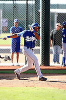 Leon Landry - Los Angeles Dodgers - 2010 Instructional League.Photo by:  Bill Mitchell/Four Seam Images..