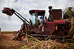 ITUMBIARA, BRAZIL - OCTOBER 16:<br /> Driver Jo&atilde;o Carolos da Silva climbs into a mechanized harvester, for cutting sugarcane stalks, near the city of Itumbiara, in Goias state, Brazil, on Wednesday, Oct. 16, 2013. Since the US recently passed a number of regulations and standards for cars and dropped tariffs that were in place for decades against Brazilian sugar, Brazilian ethanol is now flowing to the U.S., and the ethanol industry in the country is consolidating and ramping up for a new era.