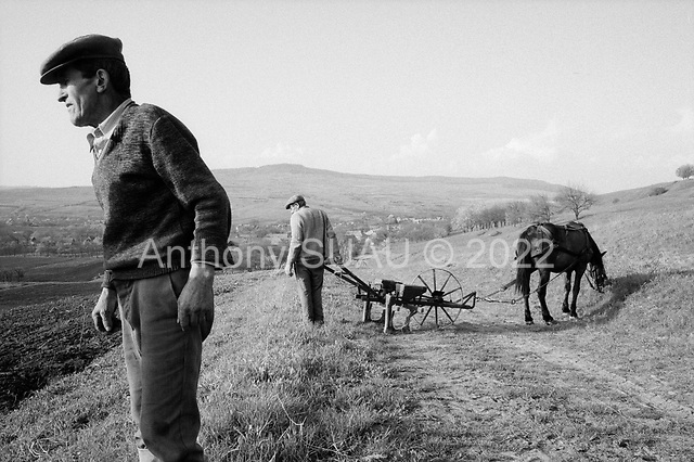 Bisericani, Transylvania<br /> Romania<br /> April 28, 1992<br /> <br /> Cultivating and planting