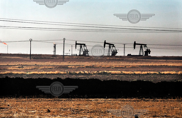 Oil well pumps (pumpjacks, nodding donkeys) on the horizon in Syrian Kurdistan (Rojava).