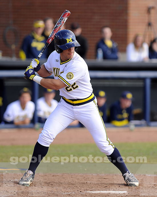 The University of Michigan baseball team lost to Minnesota, 3-1, at the Wilpon Complex in Ann Arbor, Mich., on March 29, 2013.