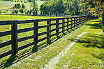Green Grass Along A Fence Line And Pasture During Autumn In Horse Country, Lexington, Kentucky, USA