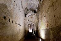 Roma 1 Aprile 2015<br /> Presentato il progetto per il risanamento della Domus Aurea, realizzato dalla Soprintendenza speciale per i beni archeologici di Roma, che consiste nella sistemazione del  giardino pensile,una parcella di 800 mq ,realizzato con tecnologie sostenibili che far&agrave; da &laquo;scudo&raquo; alla  Domus Aurea impedendo le infiltrazioni d'acqua. L'interno della Domus Aurea. Il Grande Criptoportico.<br /> Rome, April 1, 2015<br /> Presented the project for the rehabilitation of the Domus Aurea, fulfilled  by the Superintendence for Cultural Heritage of Rome, which is the arrangement of the roof garden, a plot of 800 square meters, made with sustainable technologies that will be the &quot;shield&quot; at the Domus Aurea for  preventing water infiltration. The interior of the Domus Aurea. The Great cryptoporticus.